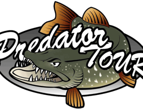 Black Bear Fishing: Predatortour 2014